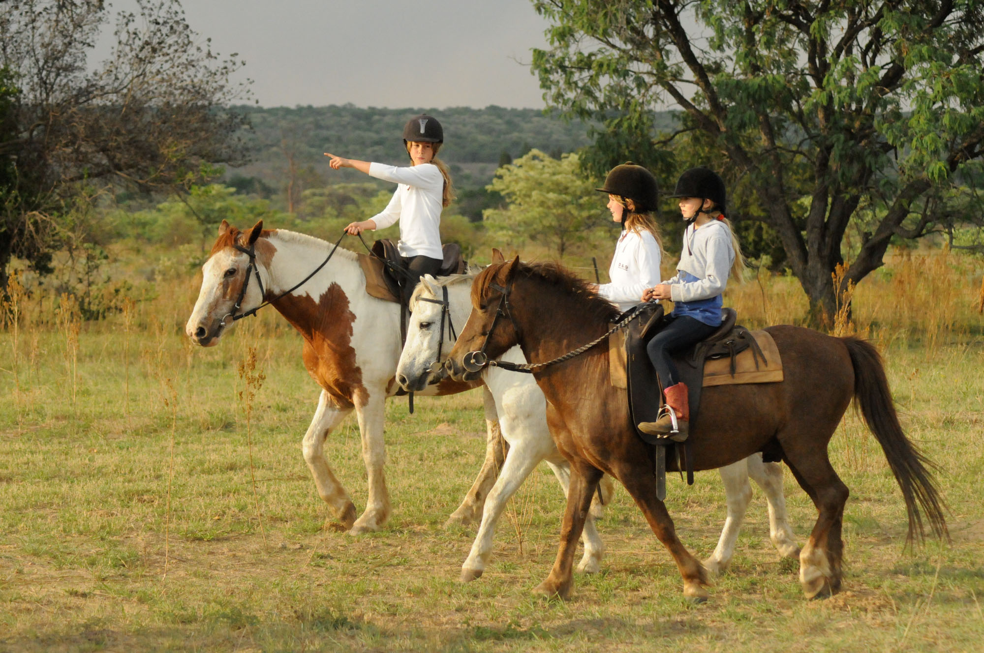 cheval-daventure-ma-ferme-africaine (2).jpg