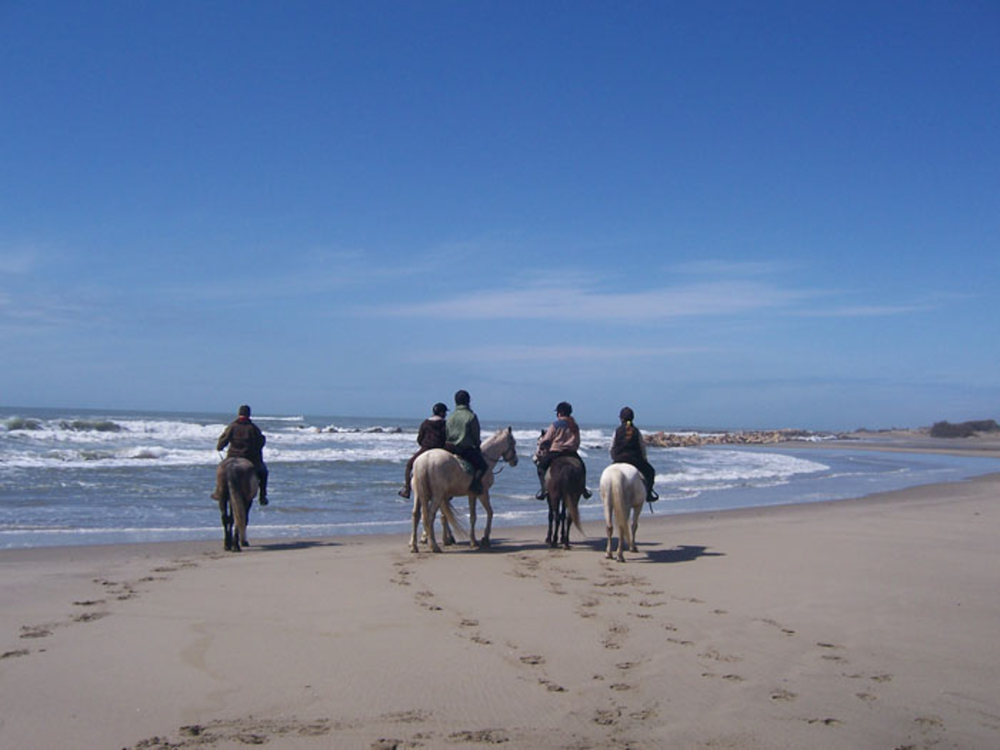 cheval-daventure-mamade-camarguaise (1).jpg