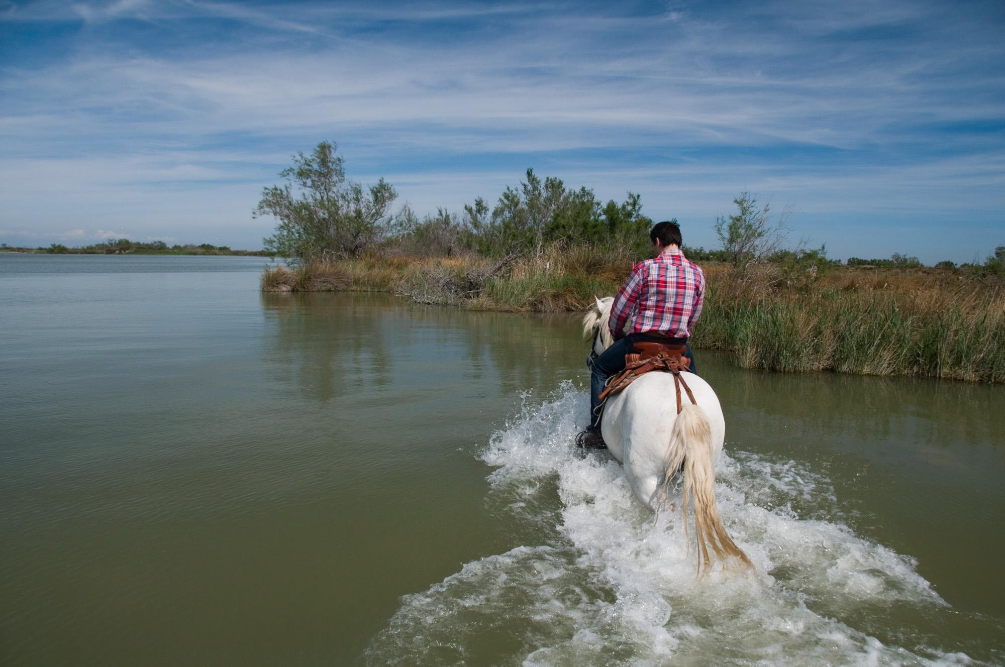 cheval-daventure-mamade-camarguaise (4).jpg