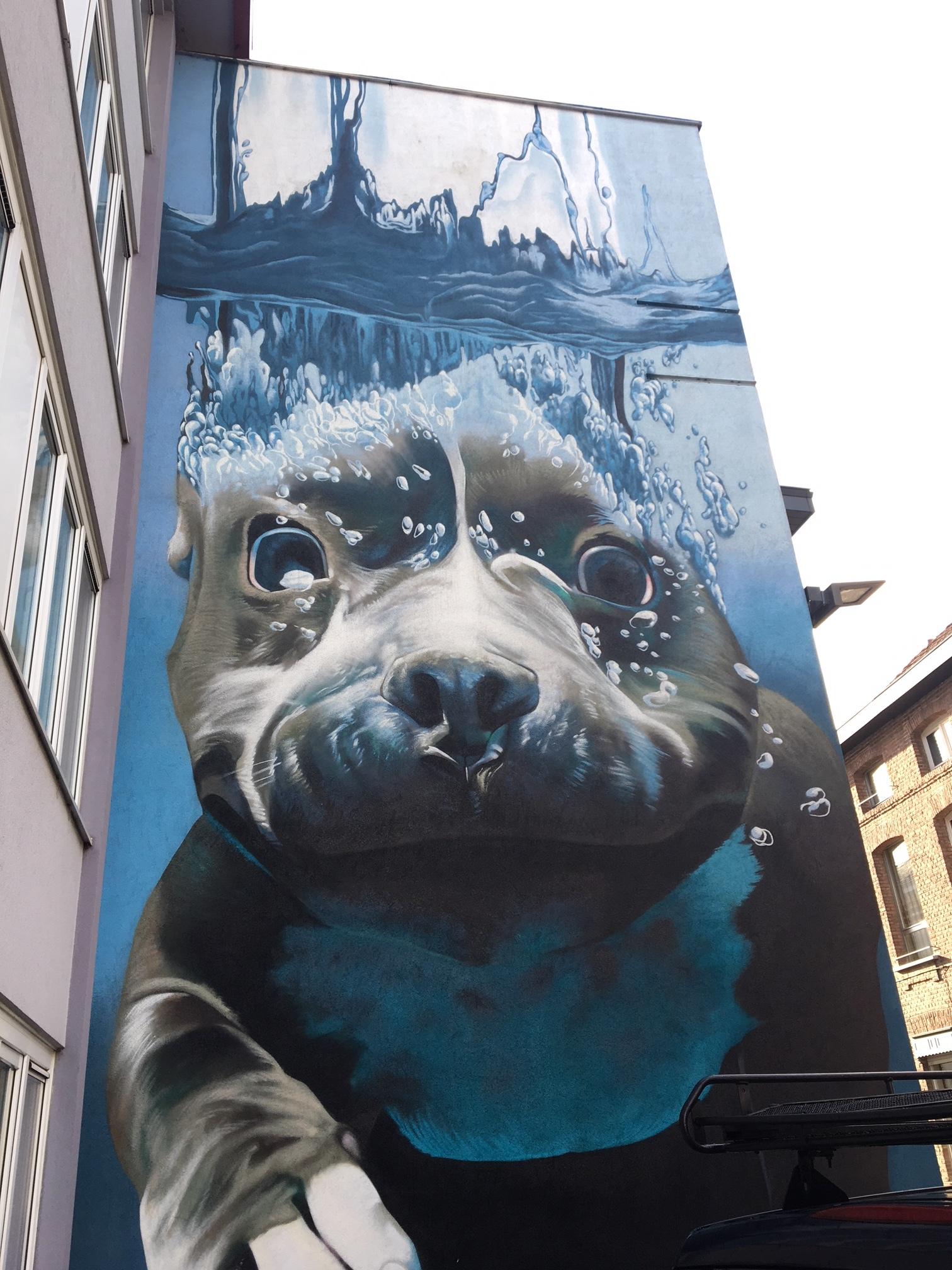 streetart 2.JPG