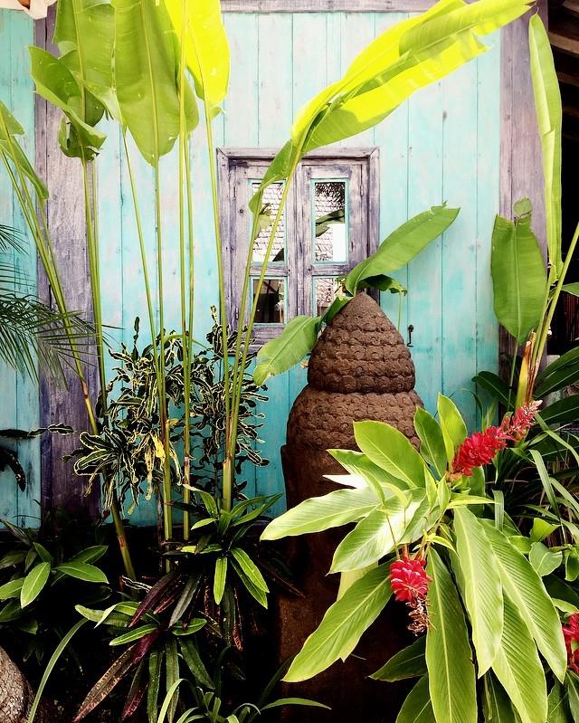 Bali, sa végétation, ses couleurs @villahariindah boutique hôtel intime doté d'un charme fou. #bali #balilife #indonesia #uluwatu #villahariindah #hotel #charme #travelblogger #travelgrams #vacancesenfamille #valisesenfamille