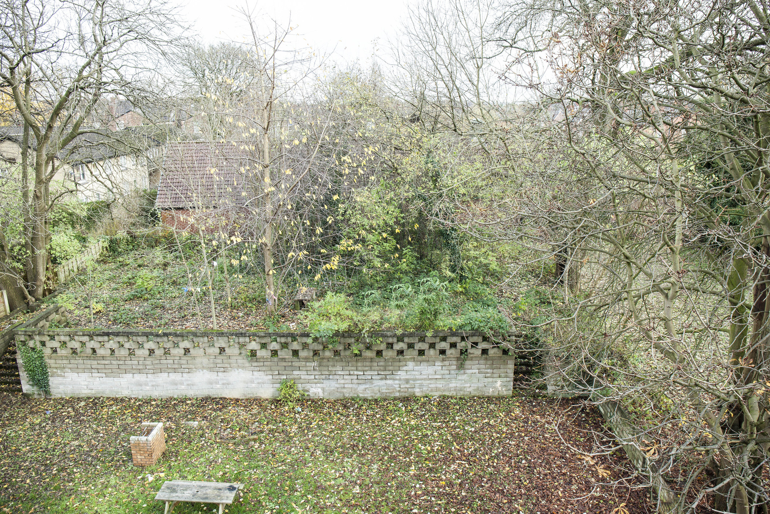 11a Amherst Road Garden