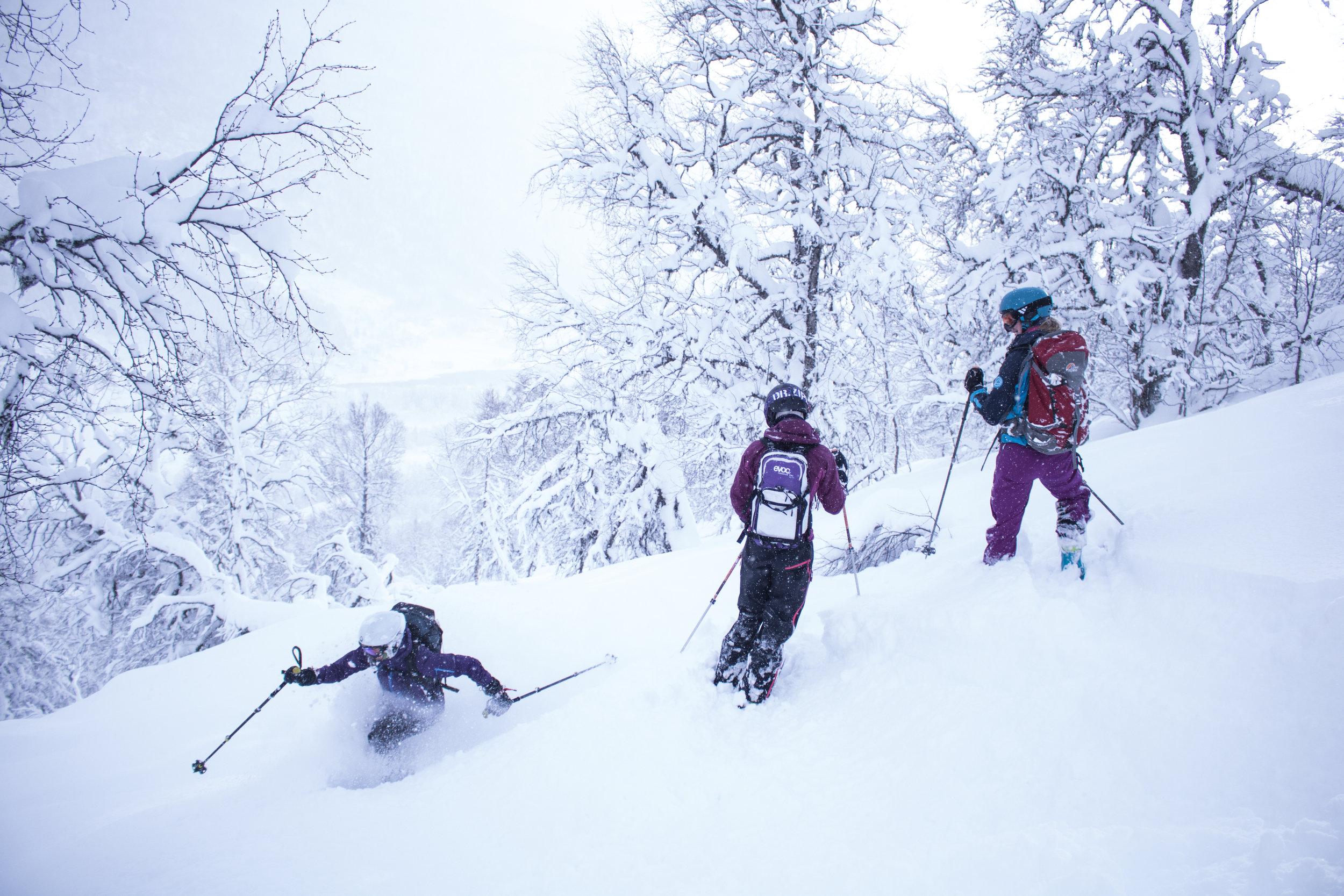 Snow chasing (Pål G. Kielland)