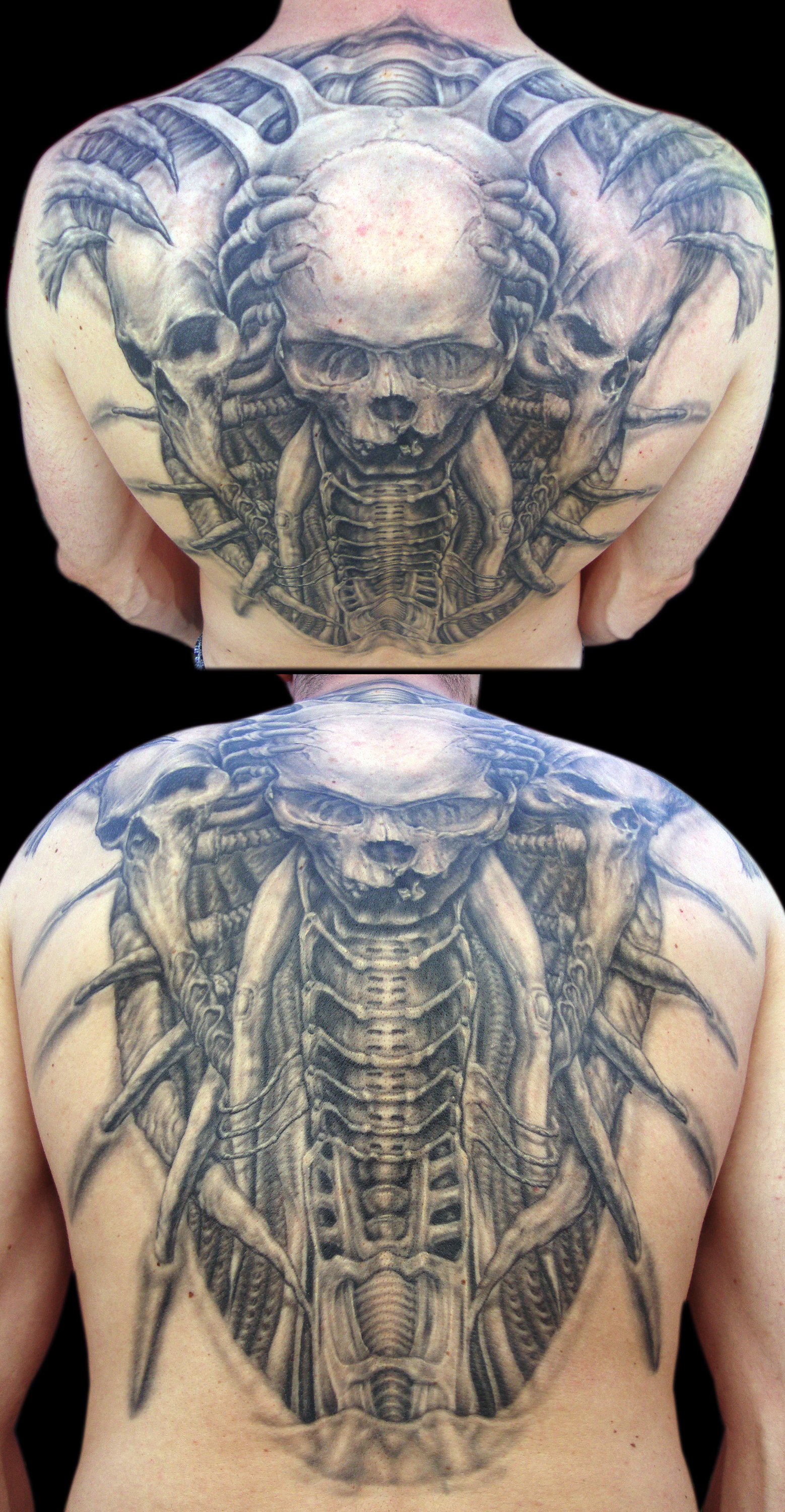 Black and Grey Biomechanic Skull Back Piece Tattoo, (healed) multi angle