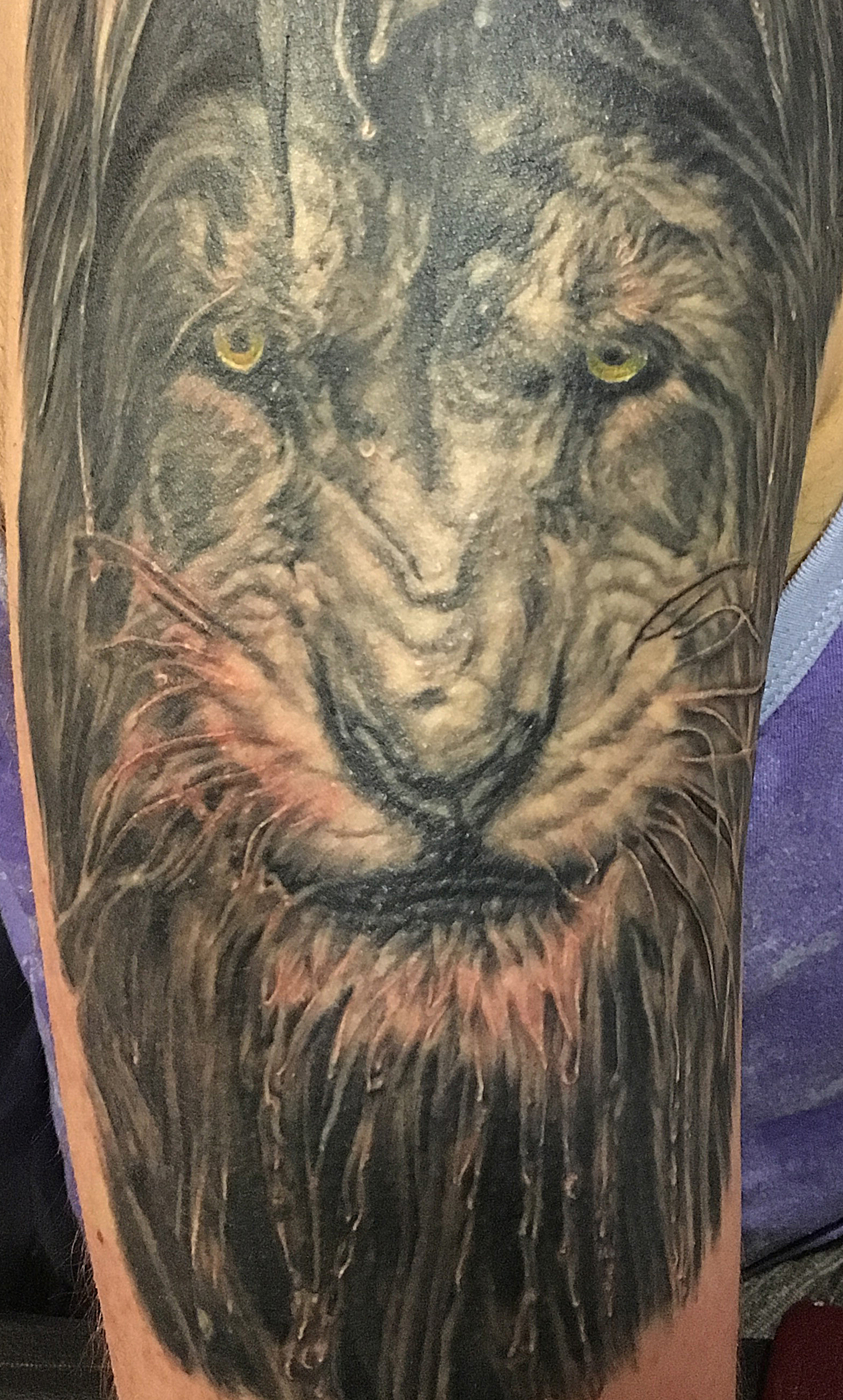 Black and Grey Wet Lion Portrait Tattoo, with green eyes, detail zoom
