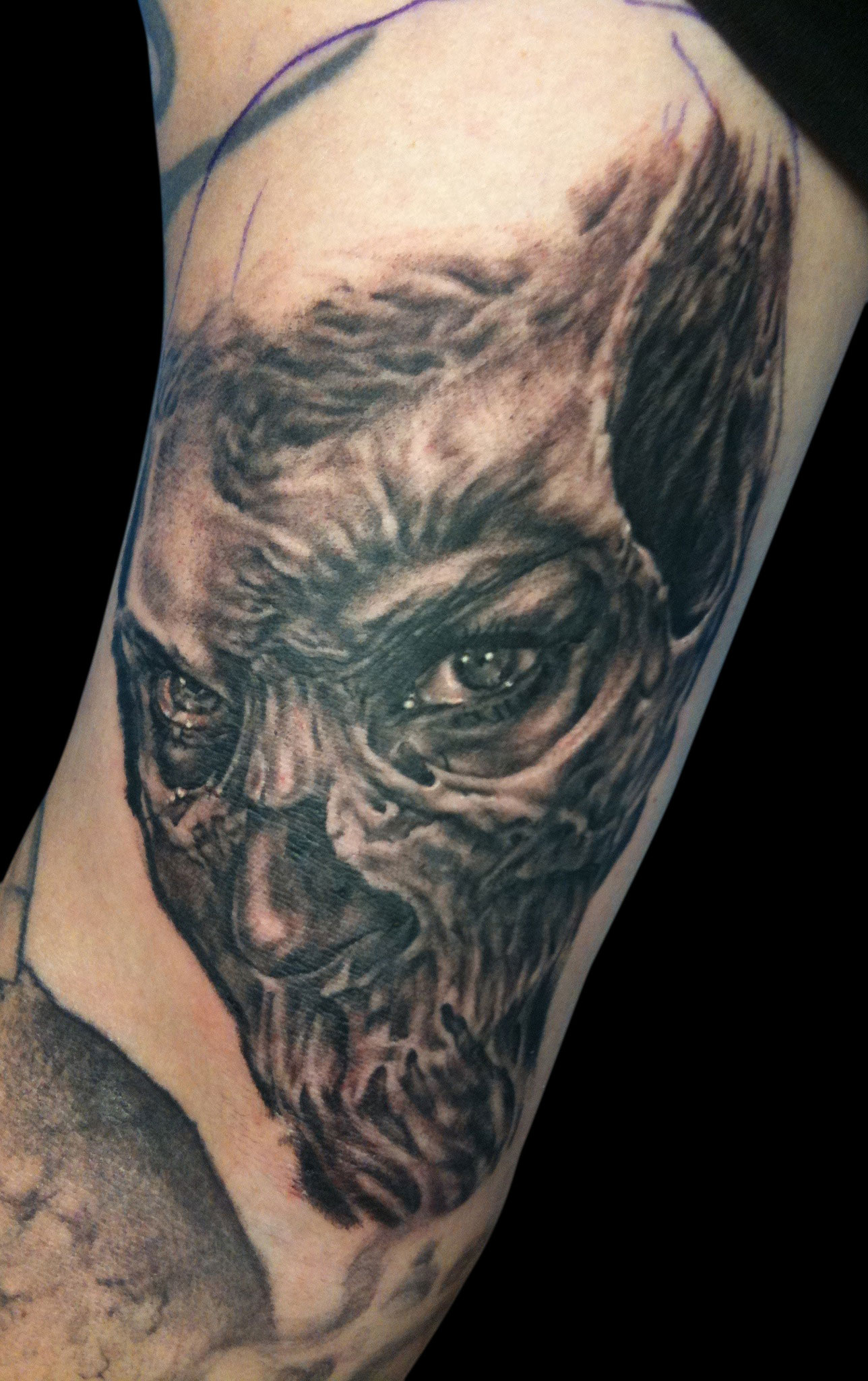 Black and Grey Skull/Woman Face Tattoo 2, (fresh)