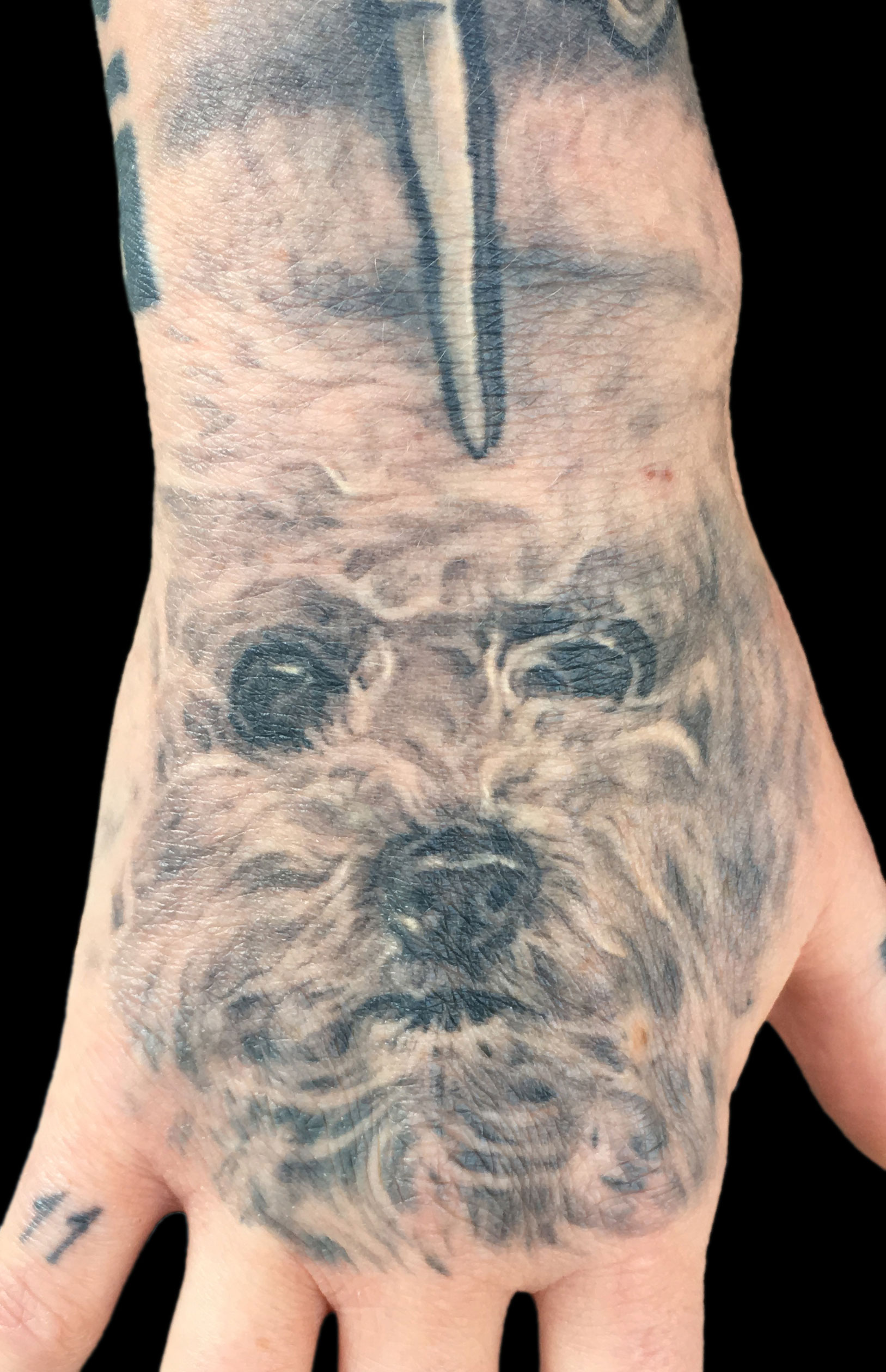 Black and Grey Bichon Frise Dog Portrait Tattoo, (healed) on hand