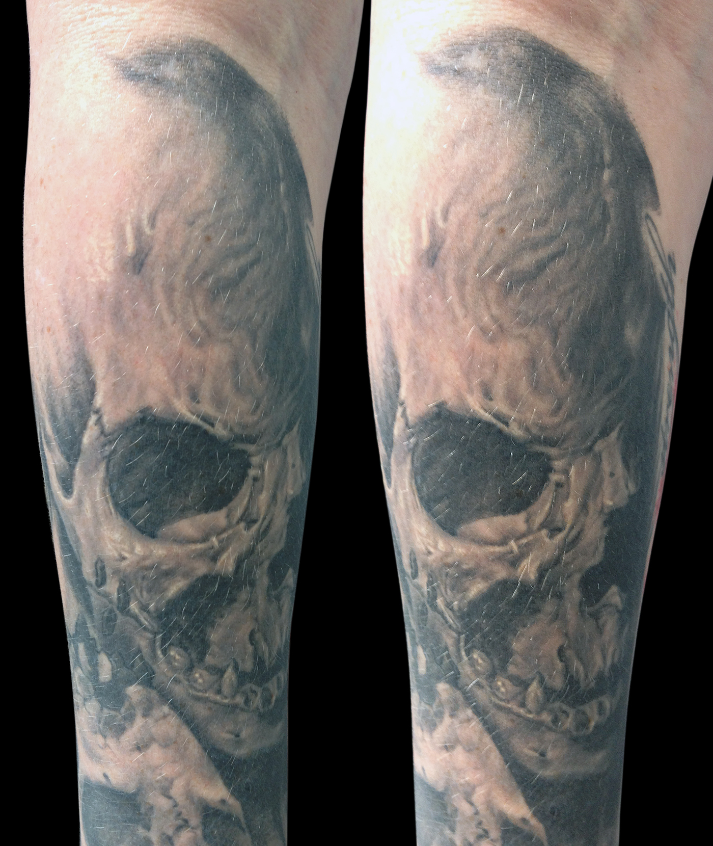 Black and Grey Forearm Skull Tattoo, (healed) multi angle, Southern Ink Exposure Cape Town Tattoo Convention, South Africa