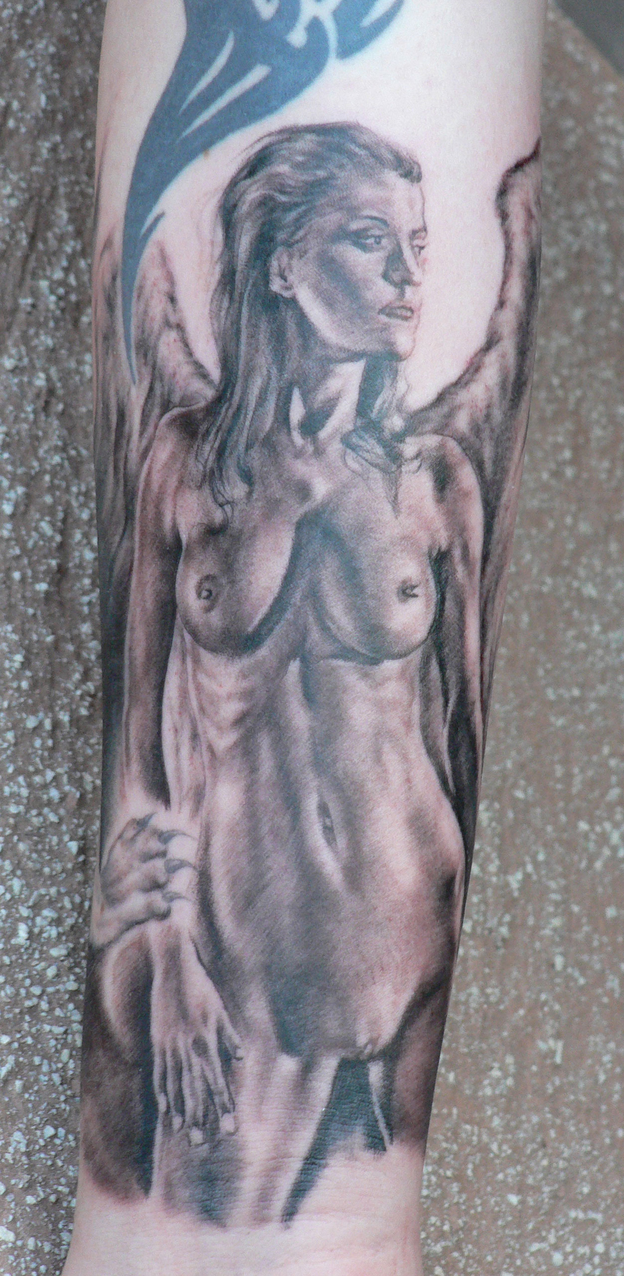 Black and Grey Winged Nude Angel Tattoo, (healed) Stockholm Ink Bash, Sweden