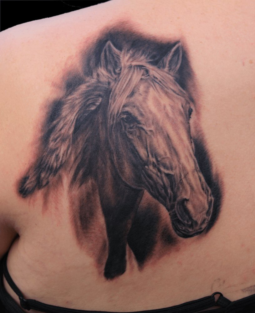 Black and Grey 'Fantastica' Horse Portrait Tattoo, (fresh)