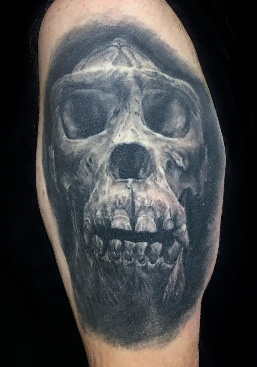 Black and Grey Gorilla Skull Tattoo (healed)