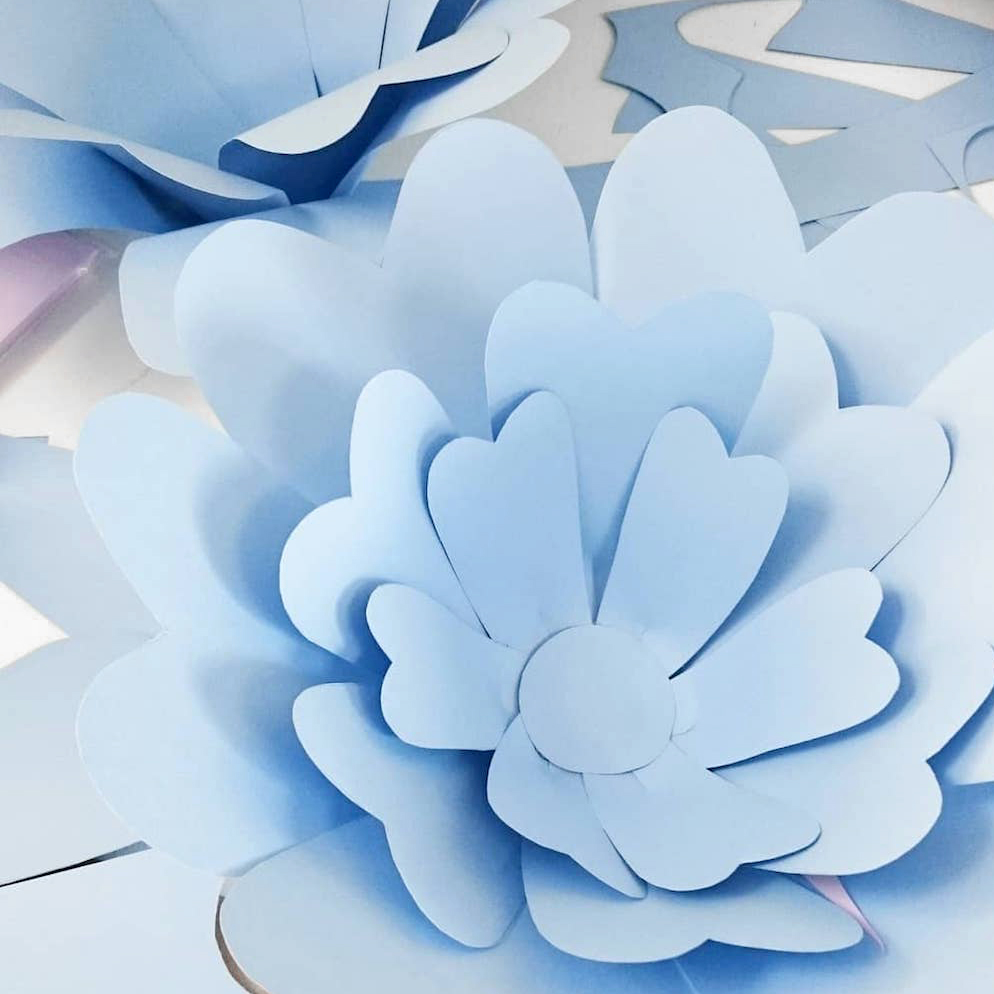 HOW TO MAKE GIANT PAPER FLOWERS.jpg