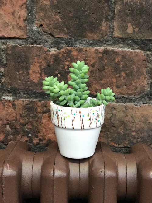 Plant+Pot+Painting+The+Crafty+Hen+2.JPG