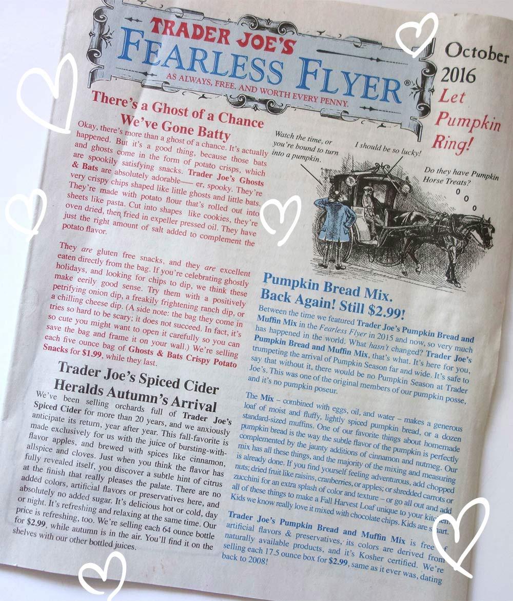Fearless Flyer