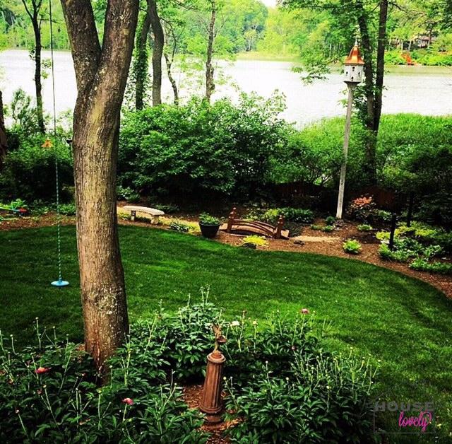 Backyard #goals.