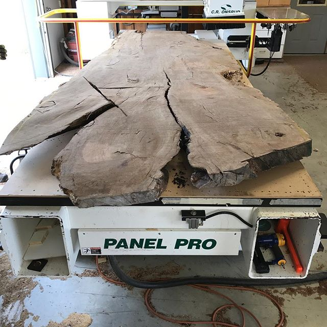 "Here is a massive #wateroak slab  64""x13'  #bigslabs #slabtable #woodworking #sanger #denton #plano #decor #forsale #frisco"