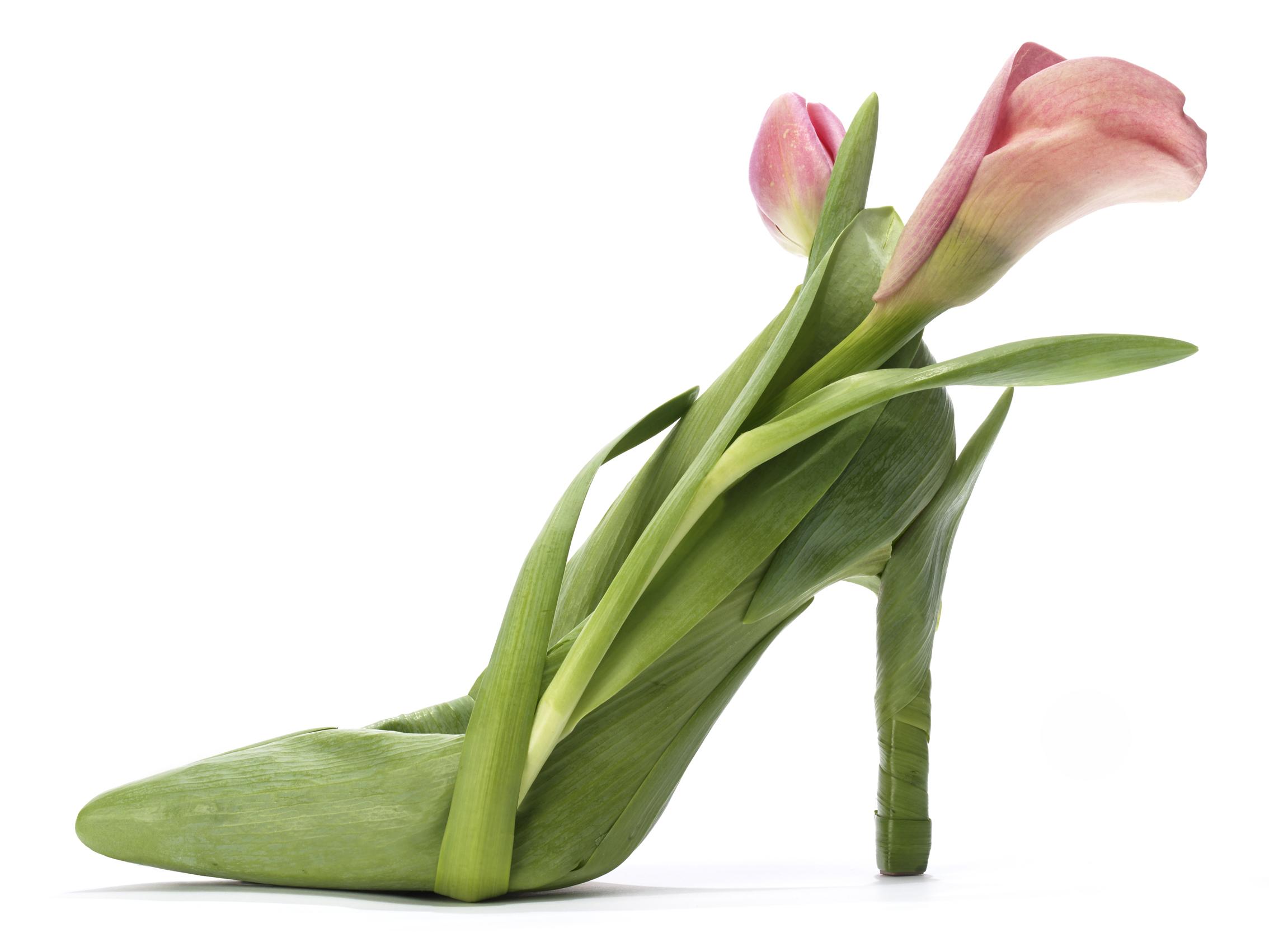 FlowerShoe_V3.jpg
