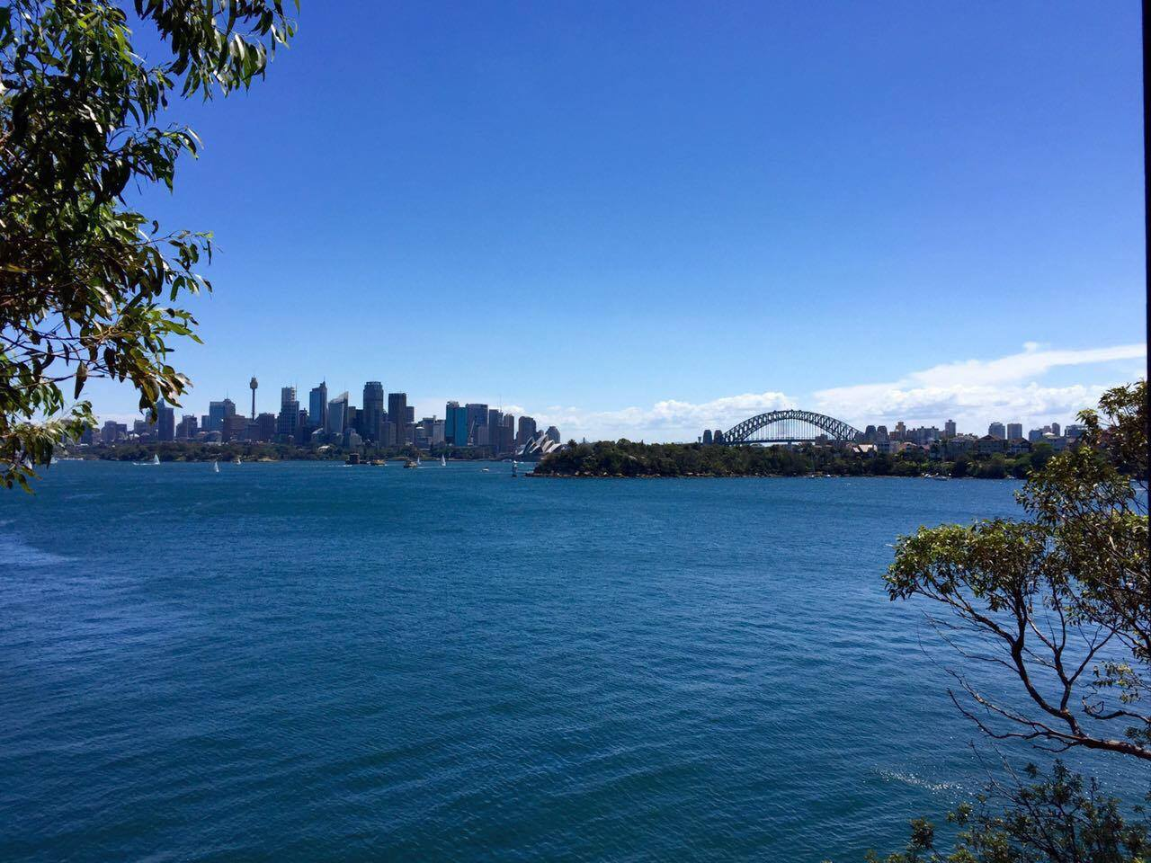 For an alternative view of  Sydney Harbor, opt to take the ferry from  Circular Quay . Ferries to nearby  Taronga Zoo also depart from the same location, and makes for a great day trip to discover koalas and kangaroos up close.