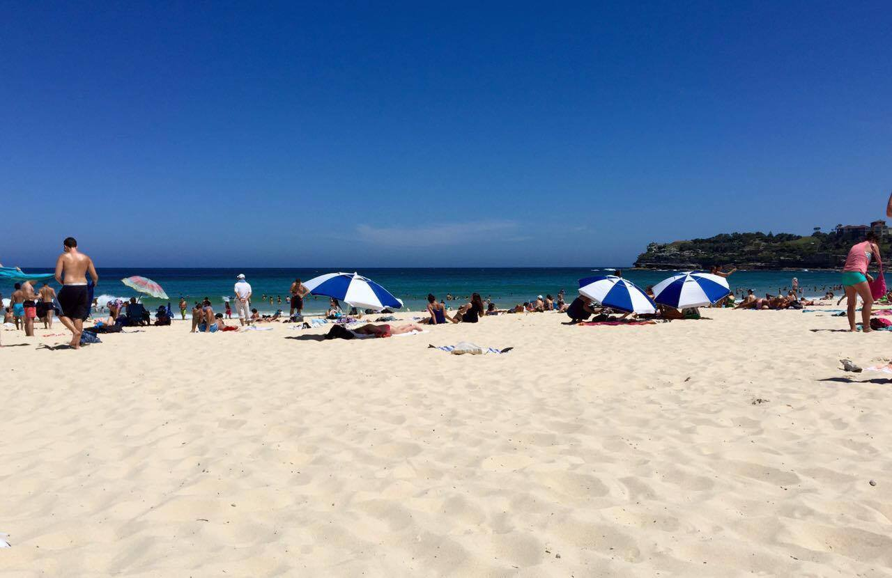 Bondi Beach  is a short drive from city center. One of the most renowned beaches in the world, it has no shortage of sand, water, or people tanning.