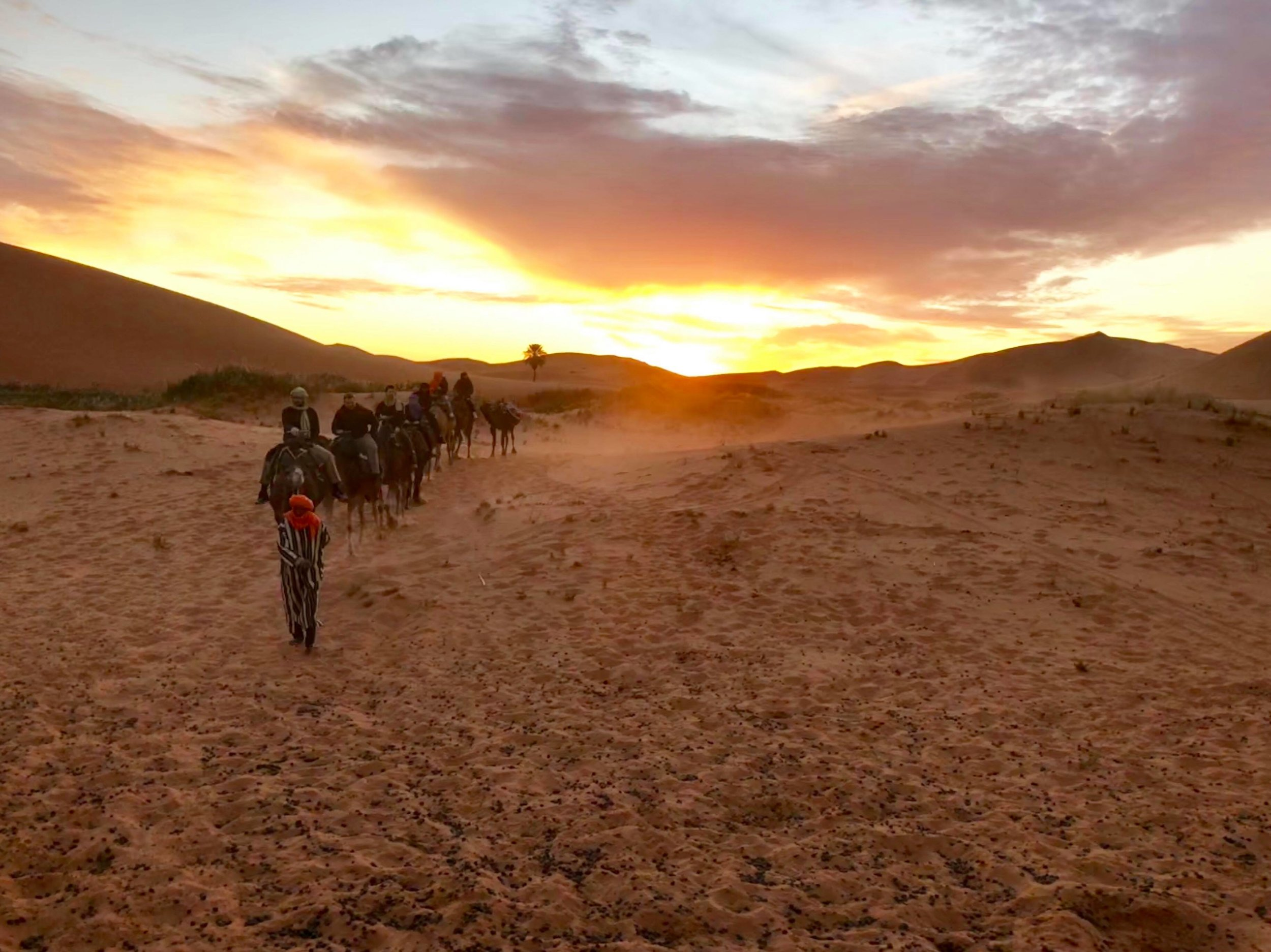 As we arrive at the camp, our camels are unlatched from one another, and led away to a separate area to rest, one by one.