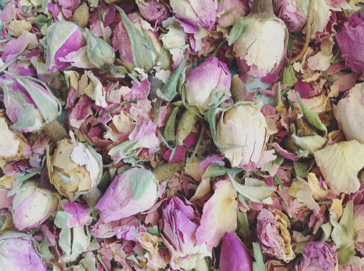 Dried roses by Eliza Demarest