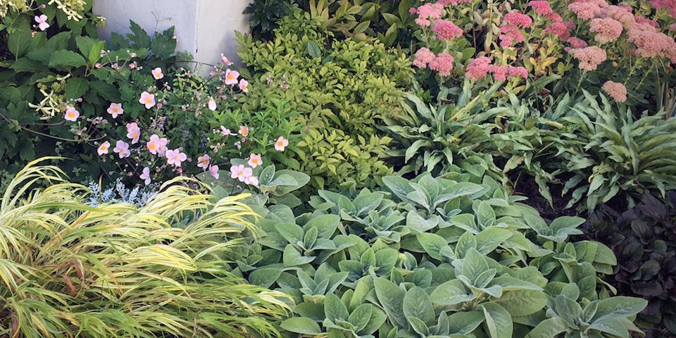 English Garden Terrace -