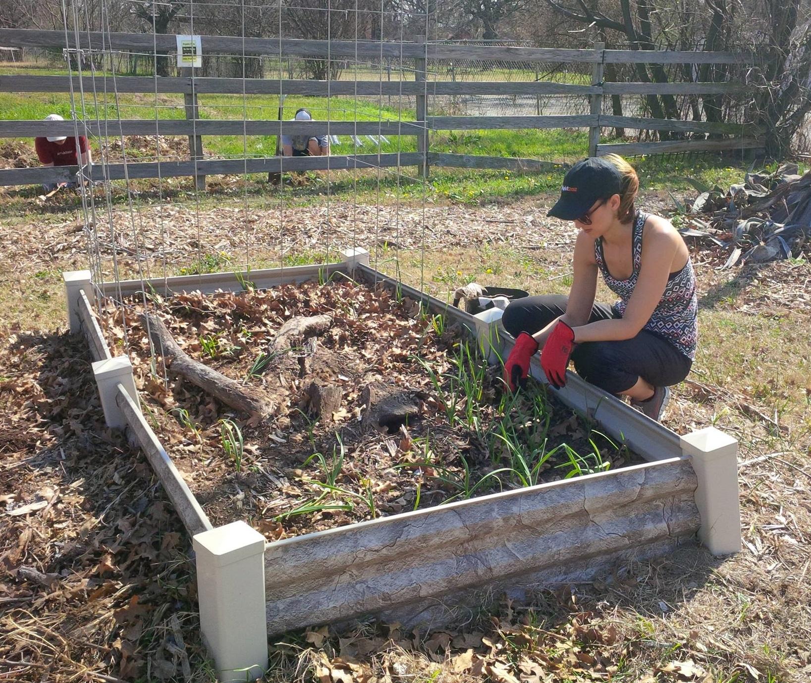 garden volunteers4.jpg