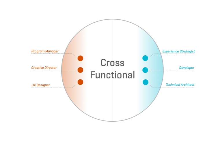 Cross Functional .jpg
