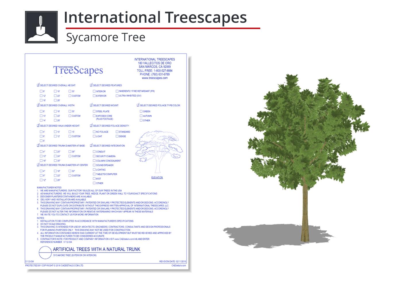 5112-034 Sycamore Tree