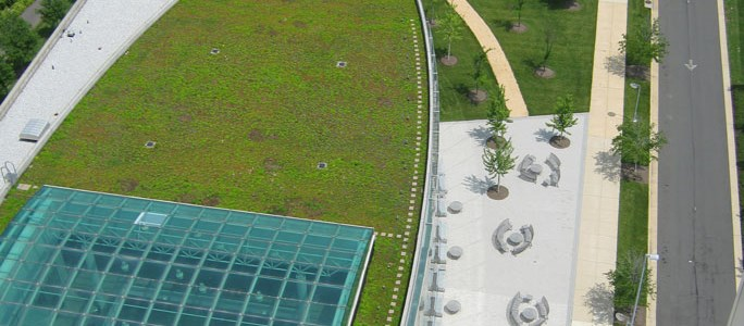 image © Chatfield Green Roofing