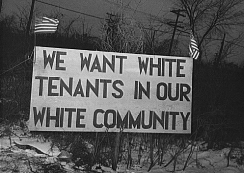 white tenants.jpg