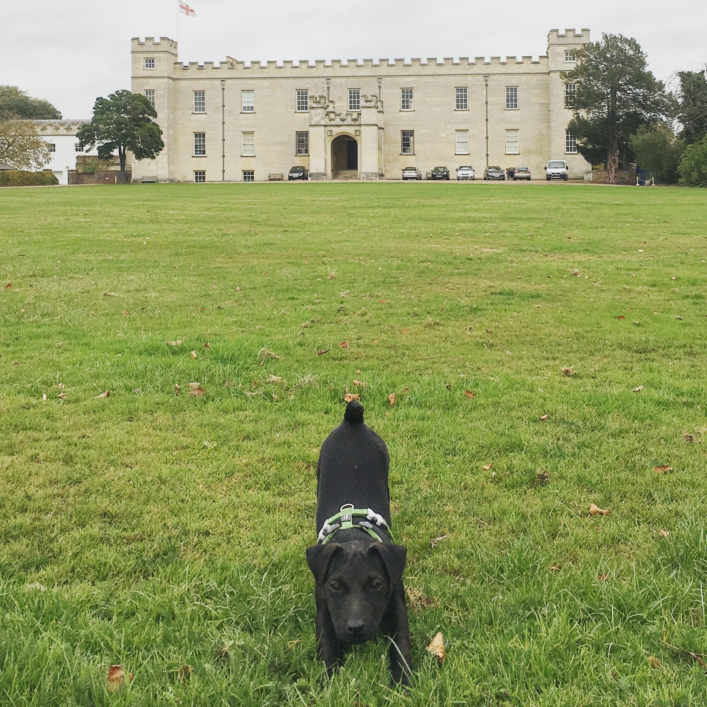 Tixall in front of Syon House, the ancestral home of the Dukes of Northumberland