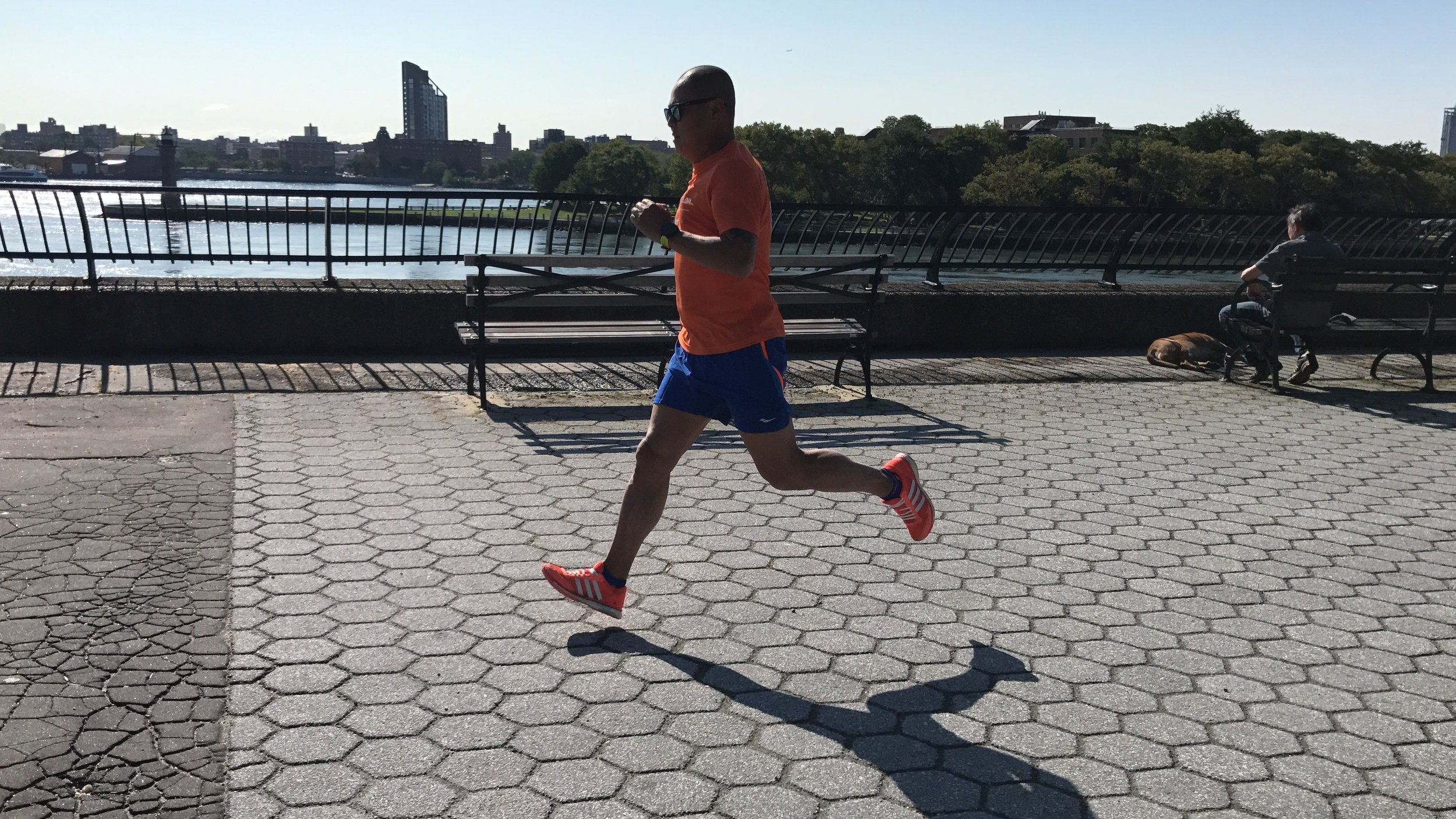 Carl Schurz Park Training