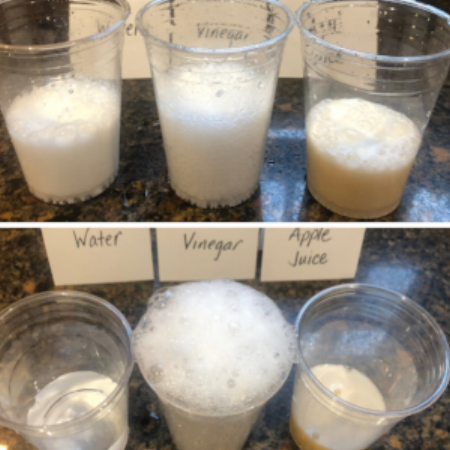 A picture of our experiment. Can you guess which set is with baking soda and which set is with baking powder?