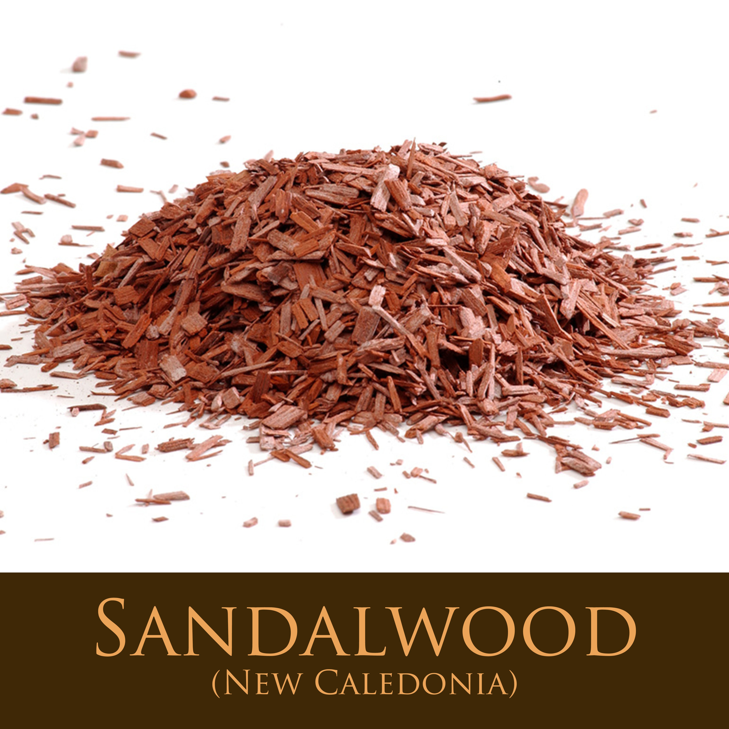 Sandalwood (New Caledonia).jpg