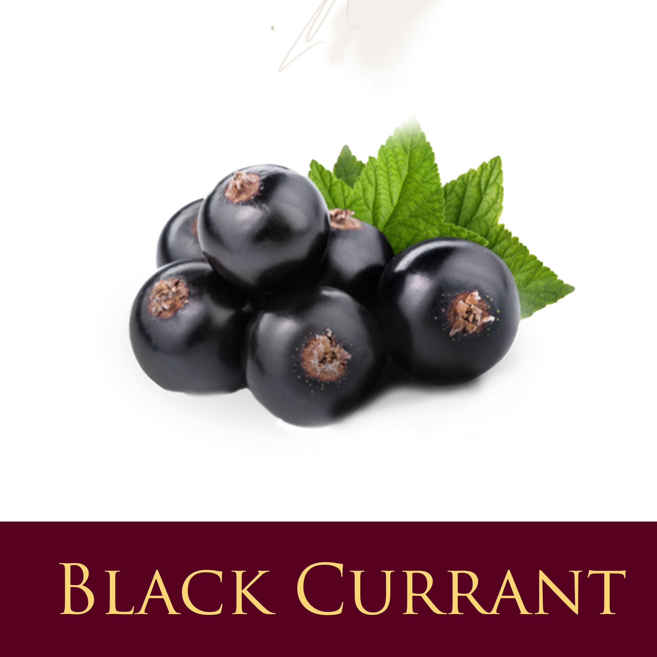 Black Currant.jpg