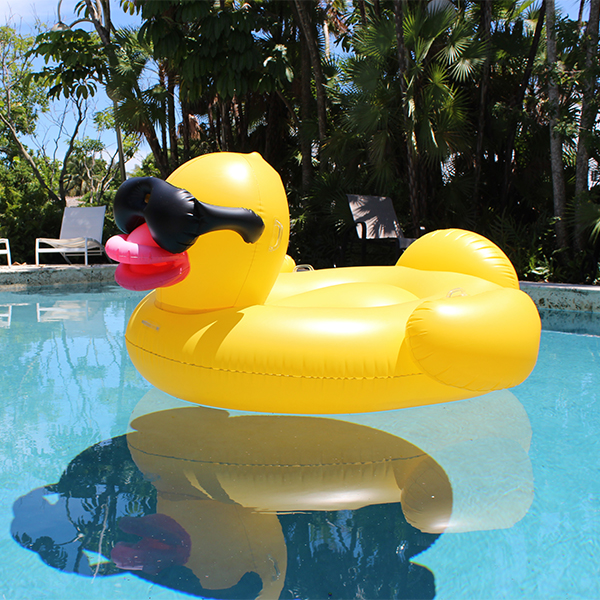ComuHouseImages_Duck.jpg