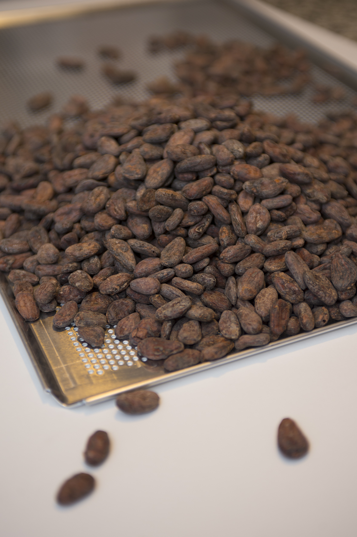 Bean to bar production - Roasting of the cocoa beans.jpg