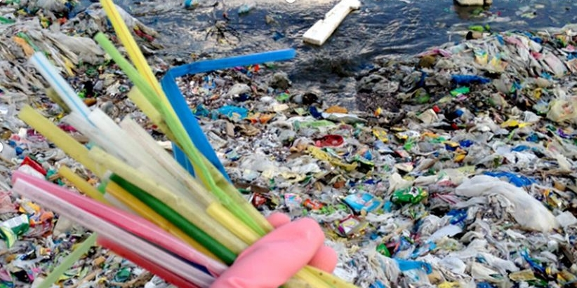 - August 25, 2017 EcoWatch published an article on Seattle banning plastic straws. To read article click here