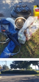 - This trash was picked out of the hedge at the entrance to Bartram Park by one volunteer (thanks Kathleen)! Some was very old evidenced by faded beer can labels