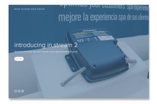GeckoAlliance_stream2.jpg