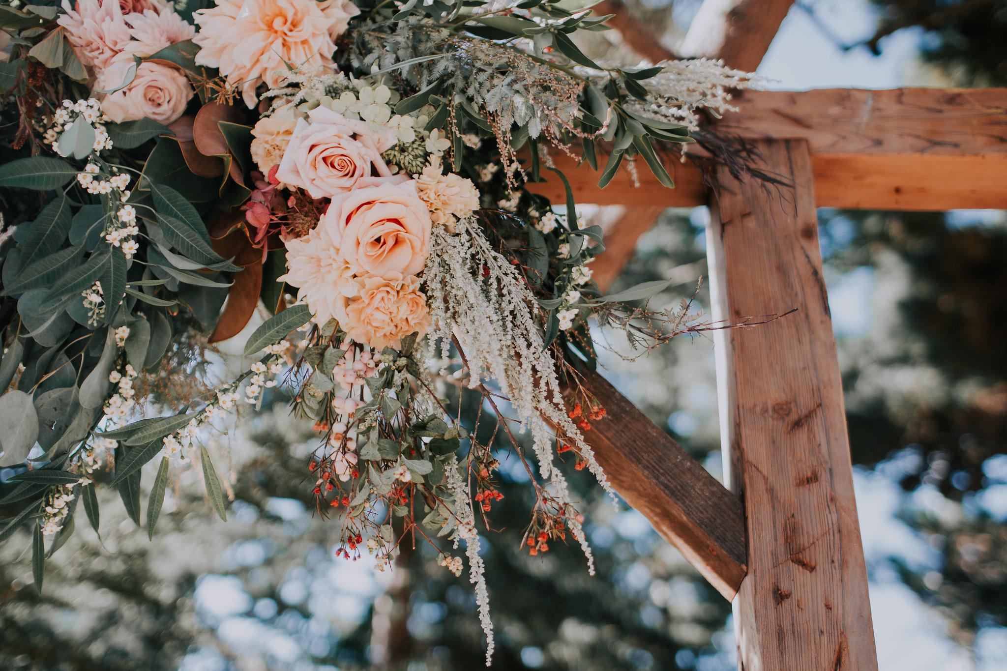 Backyard-Wedding-Montara-California-Megan-Josh-Vafa-Photo-465.jpg