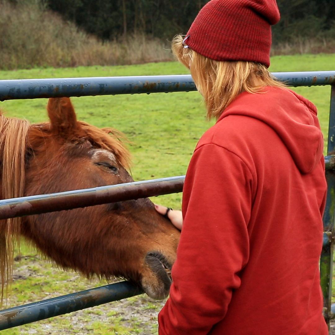 Hannah-Horse_Square.jpg