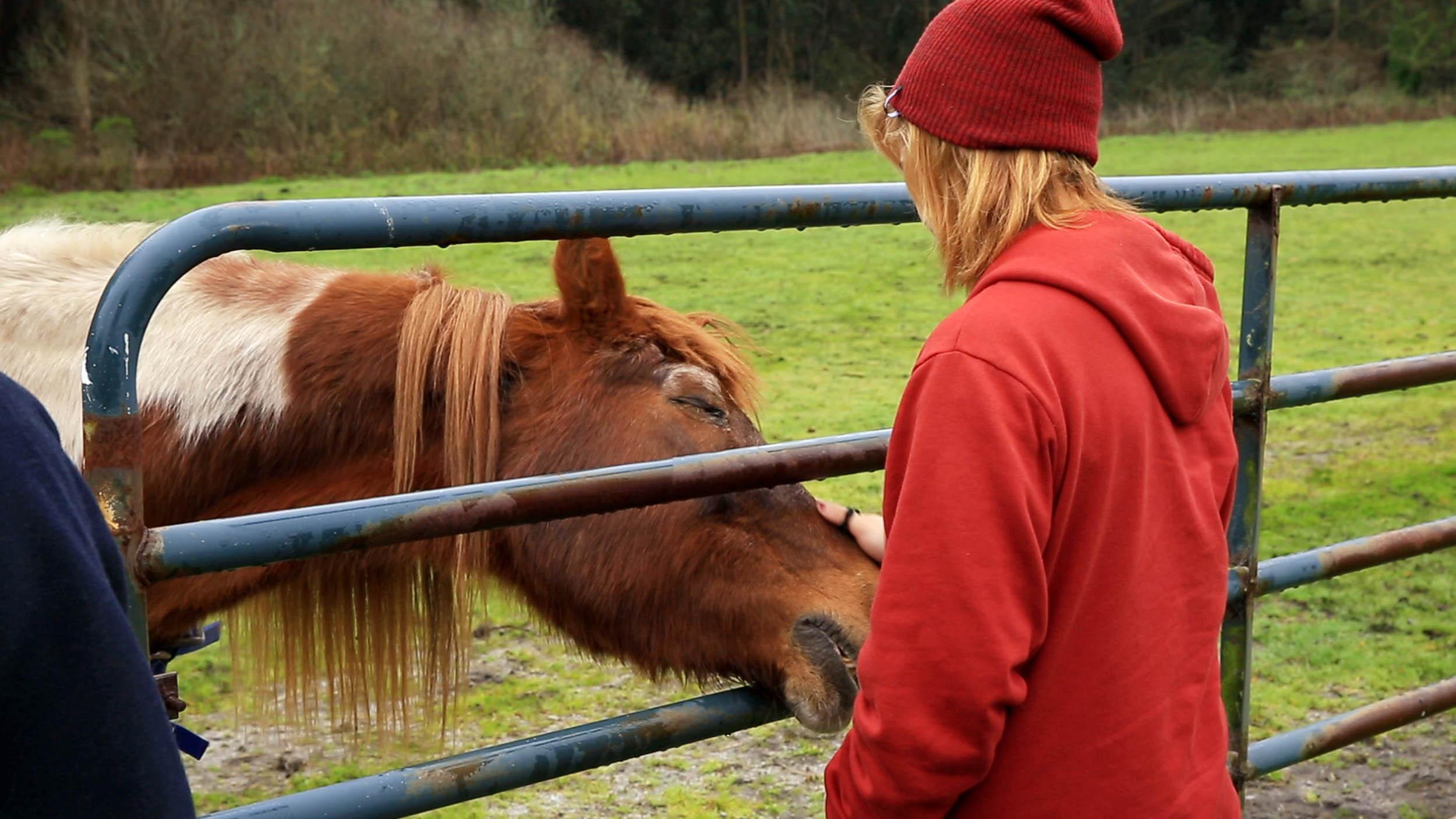Hannah-Horse.jpg