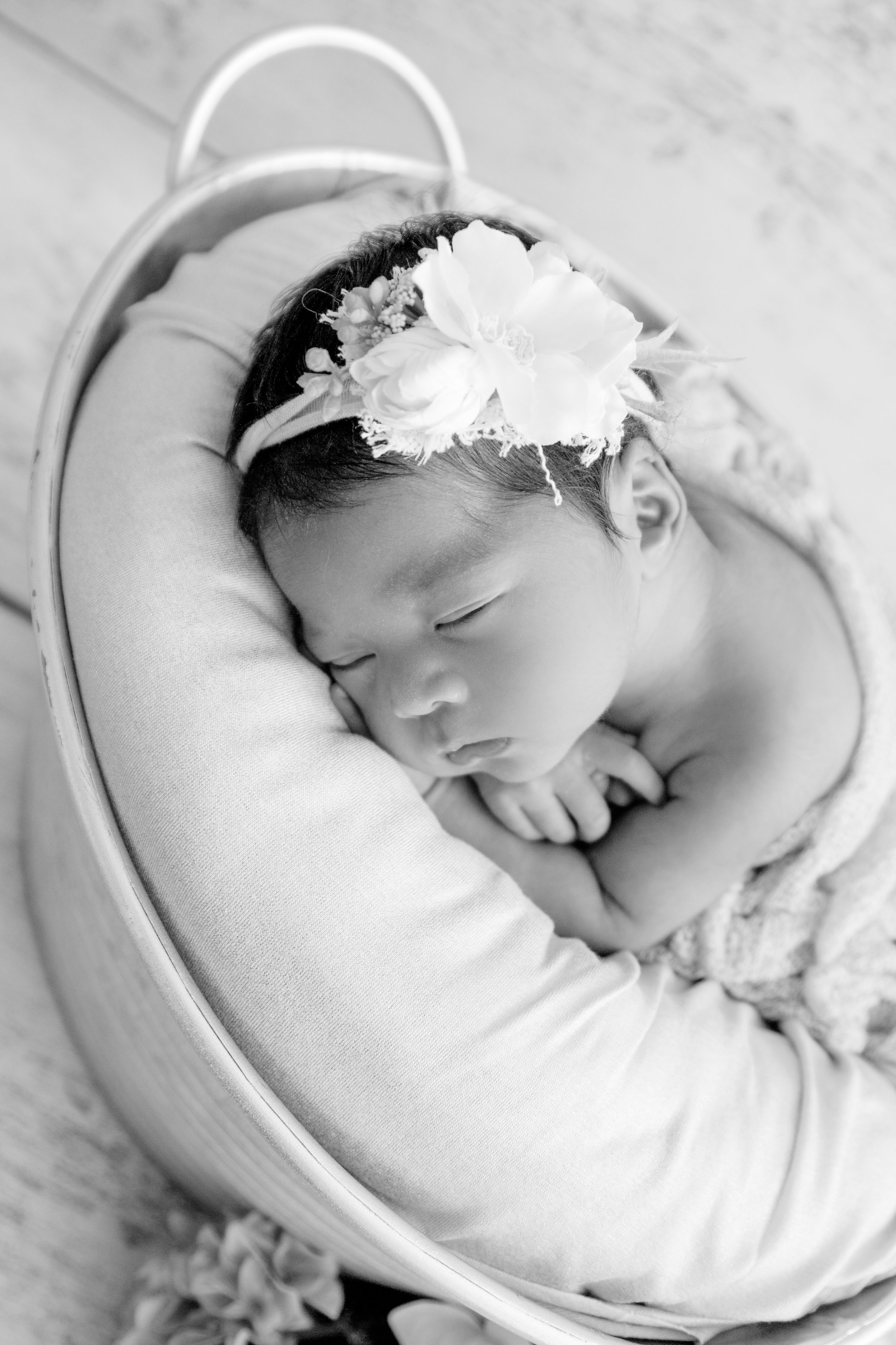 M {Newborn}-1.jpg