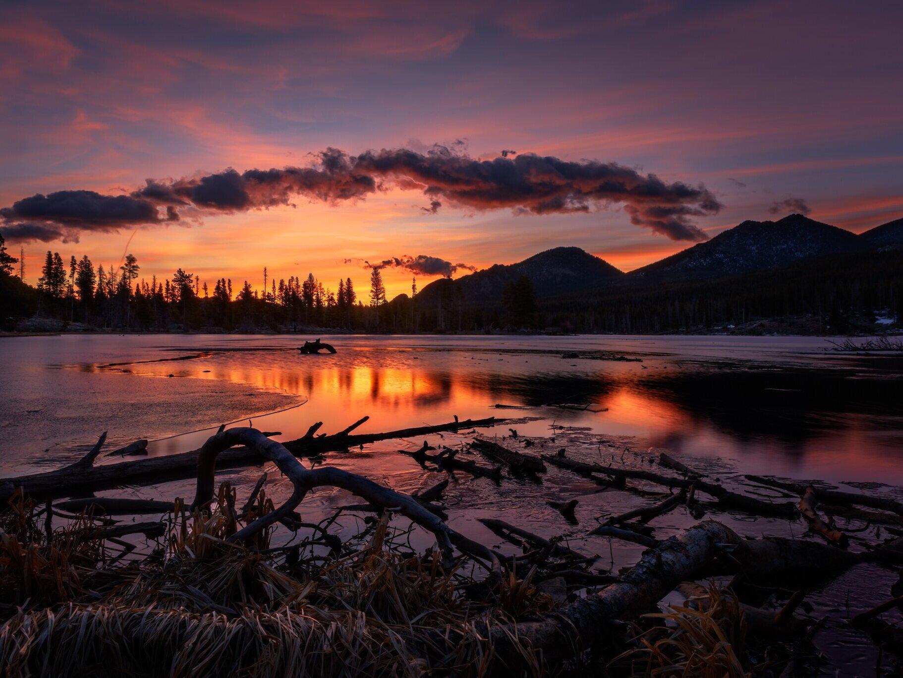 Landscape Gallery -