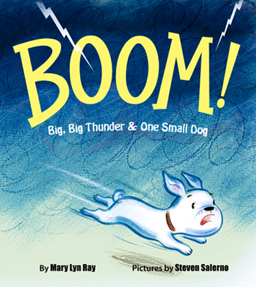 BOOM! /2013 Hyperion Books - Disney