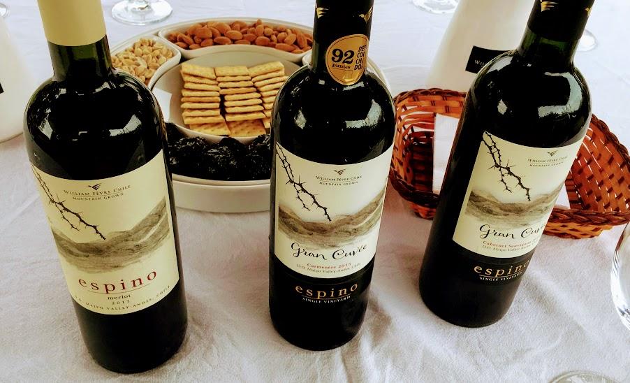 Vino tinto selection for the day: Merlot, Carmenere, Cabernet Sauvignon