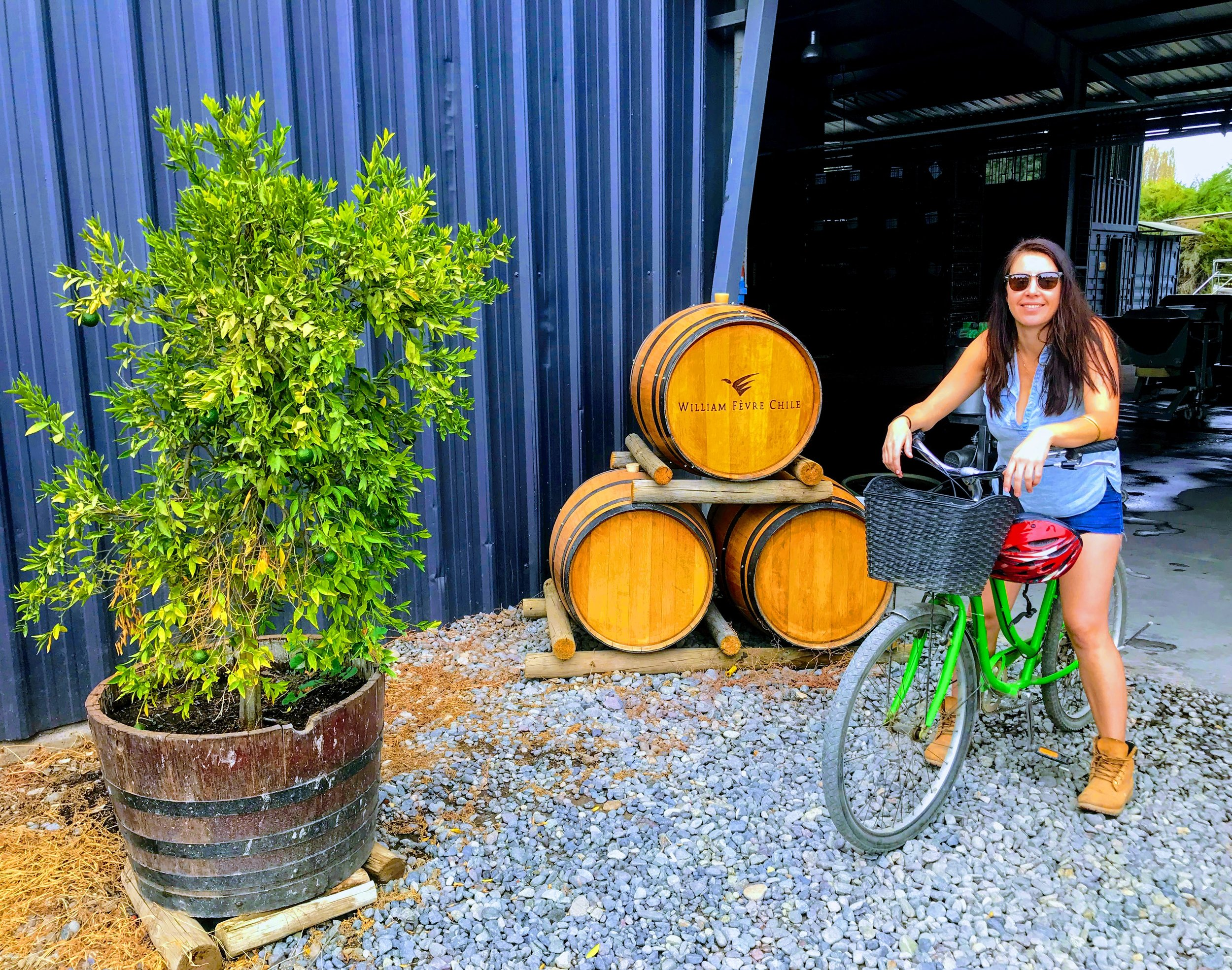 Biking & wining my way around the gorgeous William Fèvre Estate in Maipo Valley, Chile