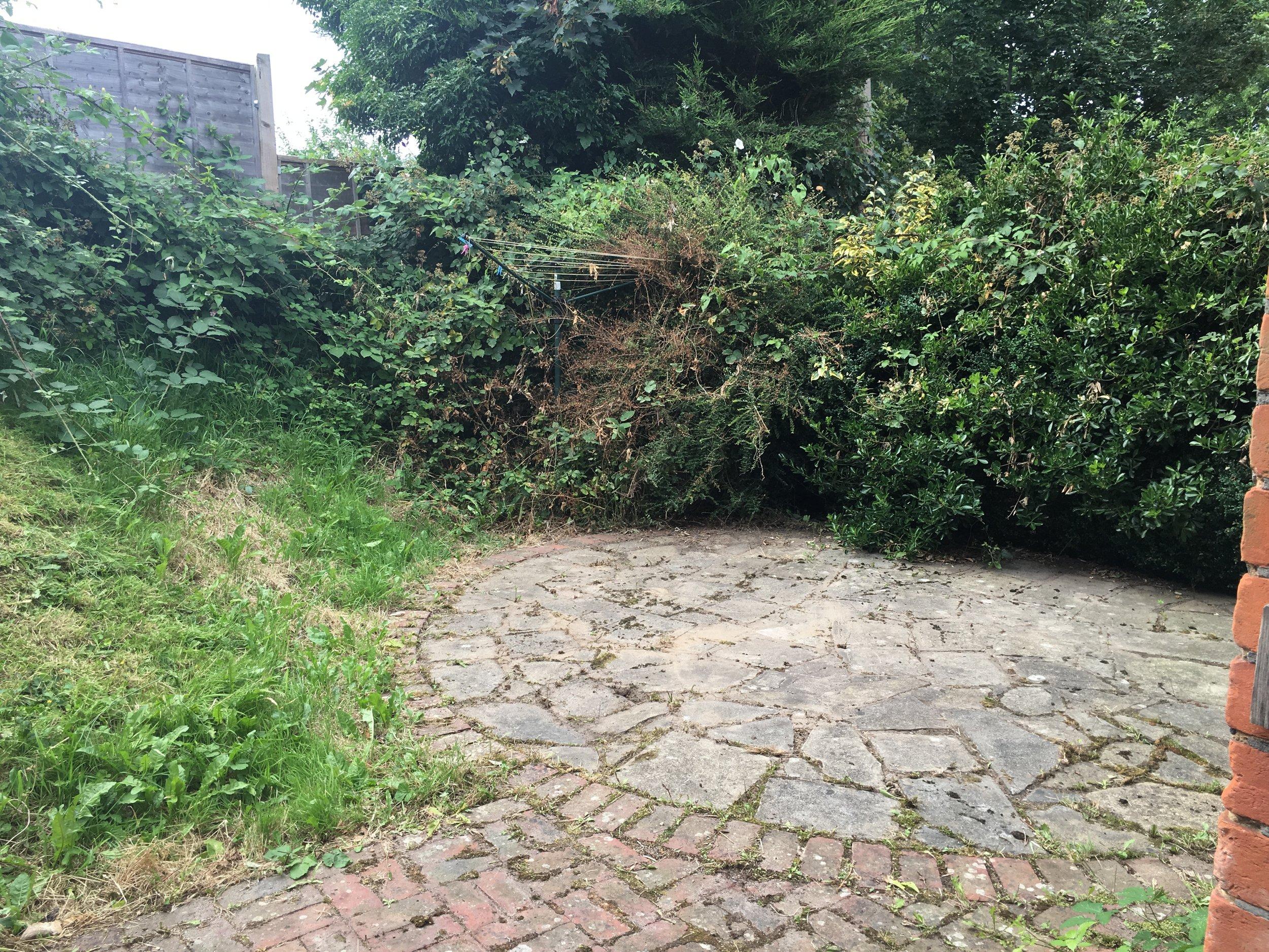 Garden - Before